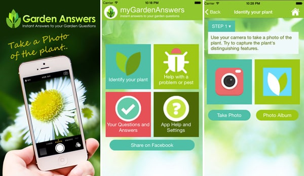 All You Need To Know About Plant Identification App